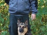 Kim Møller fra Sikkerhedszonen mærker stigende efterspørgsel på vagter med hunde til at rundere på virksomhederne om natten. Her ses han med sin hund Neema.