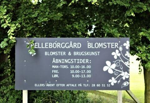 Trelleborggård Blomster. Blomster og brugskunst. Foto: Anne