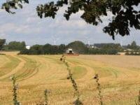 Alvorlige ulykker ved høstarbejde
